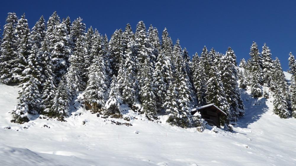 Winterbilder vom Stoos